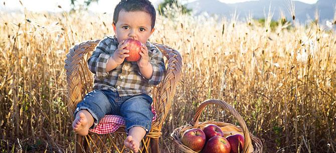 Una cesta de manzanas